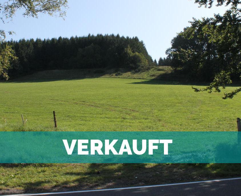 Lengeler, Burg Reuland